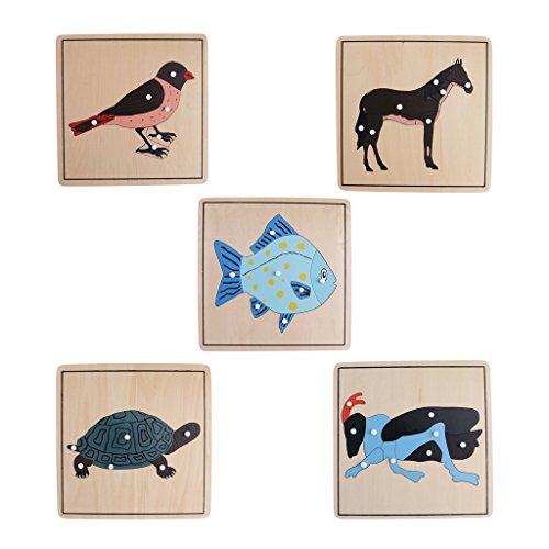 KESOTO 5X Montessori Knob Puzzle Tierkarten Lernkarten Karten Spielzeug Holzspielzeug für Kinder ab 3 Jahre...