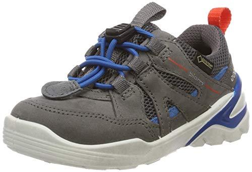 ECCO Biom VOJAGE Sneaker, Grau (Titanium/Olympian Blue 51244), 24 EU