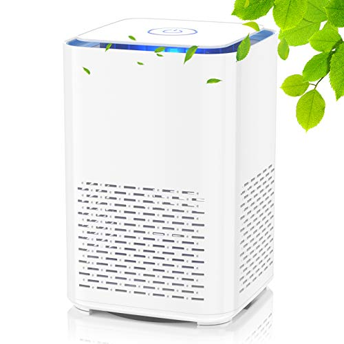 Luftreiniger mit Echtem HEPA-Filter und Aktivkohlefilter,Leiser USB-Luftfilter mit Aromatherapie-Funktion und...