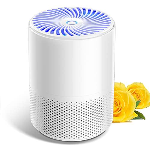 Luftreiniger für zu Hause mit echten HEPA-Filtern,geräuscharmen tragbaren Luftreinigern mit keimtötendem...
