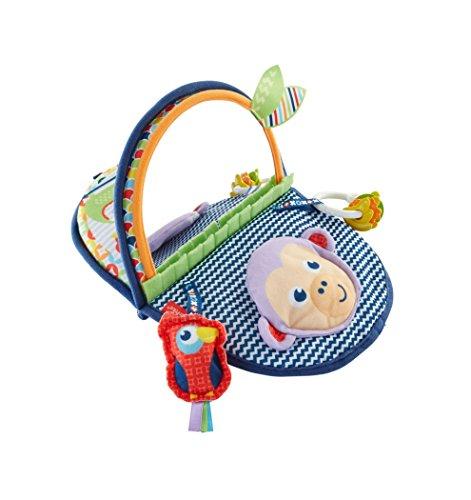 Fisher-Price DYC85 - Äffchen Spiegel Baby Spielzeug für die Bauchlage, zusammenfaltbar Babyaustattung und...