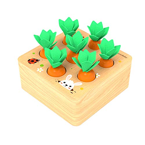 Felly Holzspielzeug ab 1Jahr Baby Motorik Spielzeug für 12 Monate Montessori Sortierspiel Holzpuzzle...