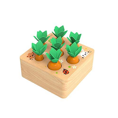 XIAPIA Holzspielzeug ab 1 Jahr | Baby Motorik Spielzeug für 12 Monate Jungen und Mädchen | Montessori...