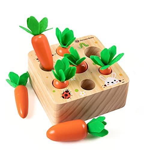 Holzspielzeug ab 1 Jahr | Baby Motorik Spielzeug für 12 Monate Jungen und Mädchen | Montessori Sortierspiel...