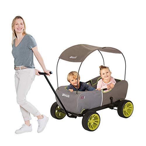 Hauck T93108 Eco Mobil Bollerwagen Handwagen Transportwagen, für 2 Kinder Geeignet, mit Sonnendach und...