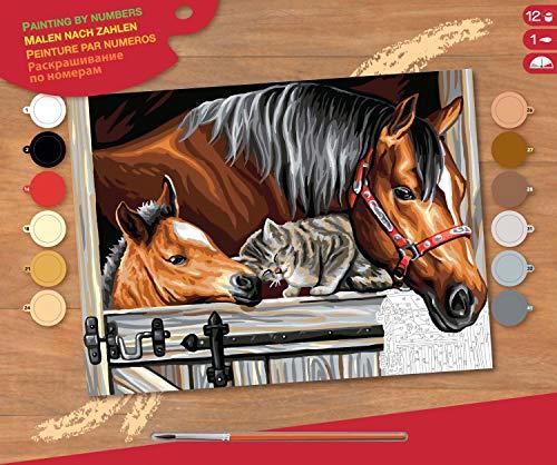 MAMMUT 8241523 - Malen nach Zahlen Senior, Pferde und Katze, Komplettset mit bedruckter Malvorlage im A3...