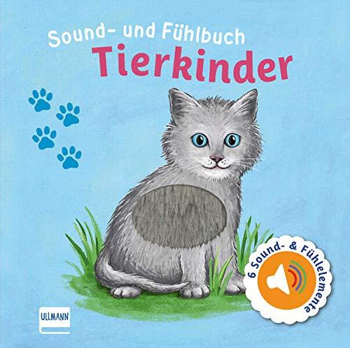 Sound- und Fühlbuch Tierkinder (mit 6 Sounds und Fühlelementen): Fühl mal hier, wie macht das Tier?