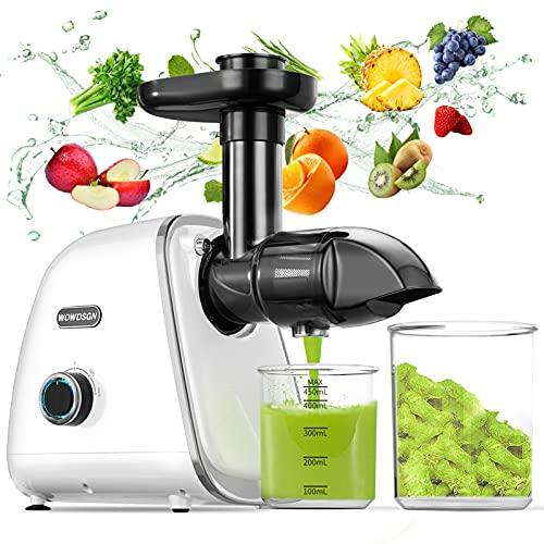 WOWDSGN Slow Juicer Entsafter Gemüse und Obst - BPA-frei Profi Entsafter mit Ruhiger Motor und Umkehrfunktion...