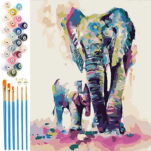 EXTSUD Malen nach Zahlen, Paint by Numbers DIY Handgemalt Ölgemälde Set selber auf Leinwand malen nach...