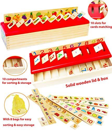Toys of Wood Oxford Montessori Lernspielzeug - Sortieren, Vergleichen und Lernen - 8 Objektkategorien -...