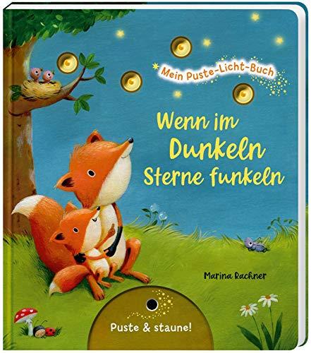 Mein Puste-Licht-Buch: Wenn im Dunkeln Sterne funkeln: Gute-Nacht-Buch mit Puste-Licht und LED-Lämpchen,...